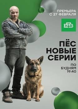 Пёс 2 сезон (2016)