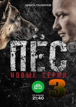 Пес 3 сезон (2017)